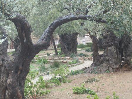 Day 06 - 01-Garden of Geth