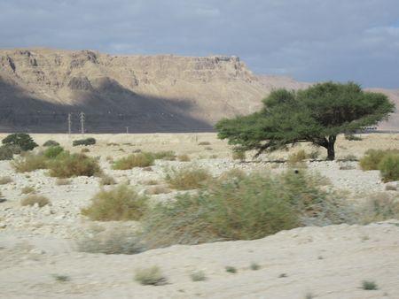 Day 05 - 05-Masada
