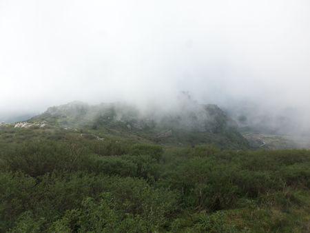 Day 4 - 08.Fog