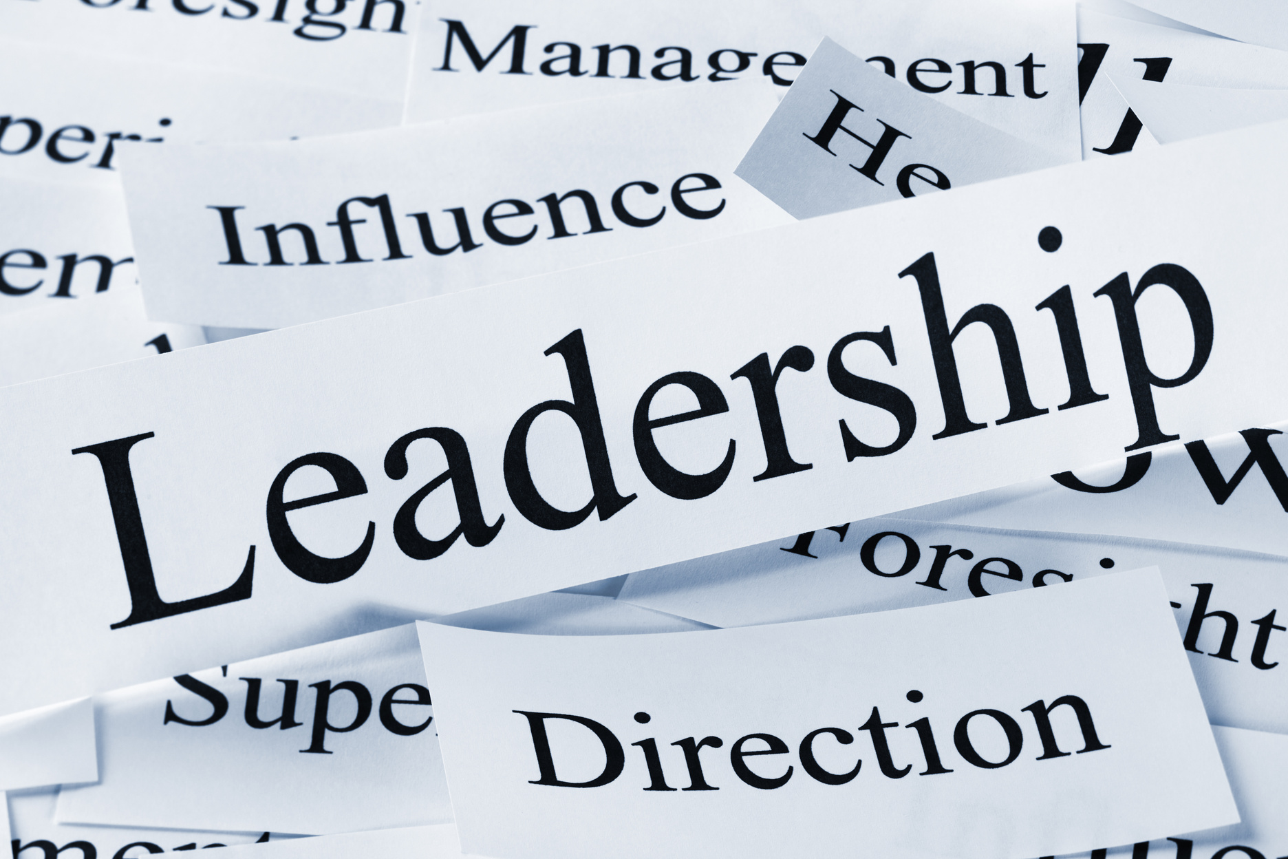 the role of a leader The president and political leader because the presidency is the foremost prize of american politics, the president is also normally the nation's principal political leader and regarded as the leader of his political party.